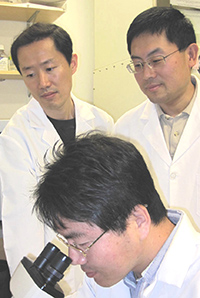 Hoseok Song, Yang Xu and Sun-Ku Chung developed the new technique in the lab.