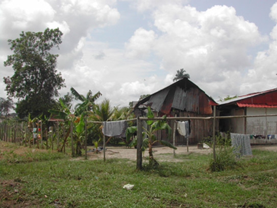 A house in a malaria-endemic region of the Peruvian Amazon