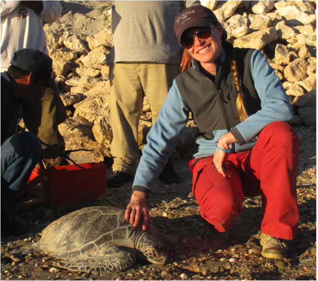 Cali Turner Tomaszewicz in Baja California with an East Pacific green sea turtle.