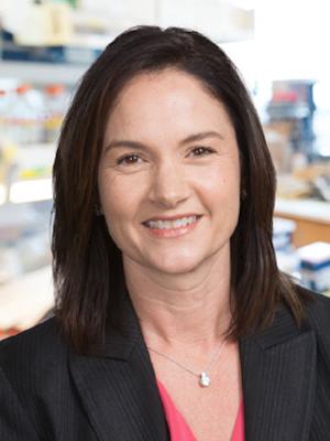 Heidi  Cook-Andersen