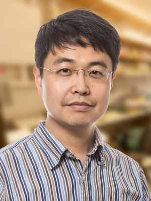 Sung Han