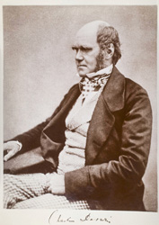 Old, sepia photo of Charles Darwin turned to the side, sitting in a chair.