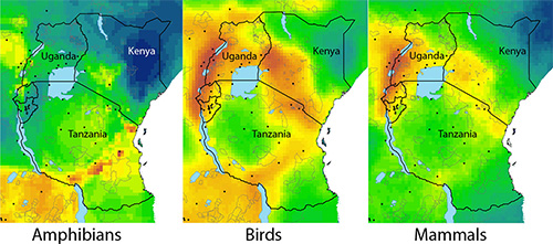 Three side-by-side figures of a yellow-green heatmap over East Africa